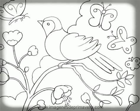 imagenes de animales y plantas para colorear animales primaverales para colorear im 225 genes de primavera