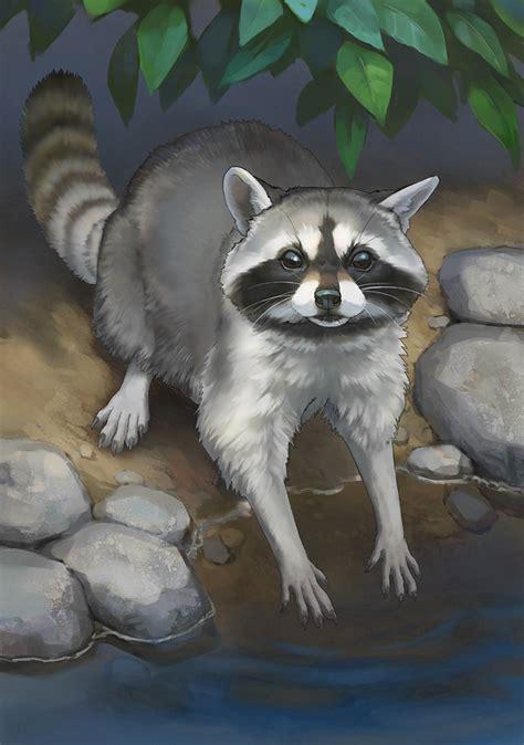 raccoon photo japari library  kemono friends wiki