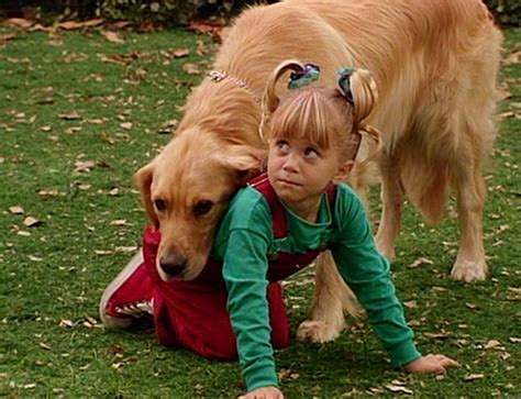 full house dog same dog played on both full house and air bud