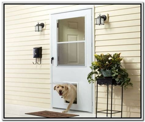 Exterior Doors With Pet Doors 20 Doors Hardware Doors With Pet Door Interior Exterior Doors