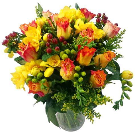 Discount Flowers by Discount Flowers Driverlayer Search Engine