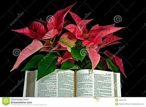 christmas holy bible vakyam pictures holy bible with poinsettia stock images image 12232454