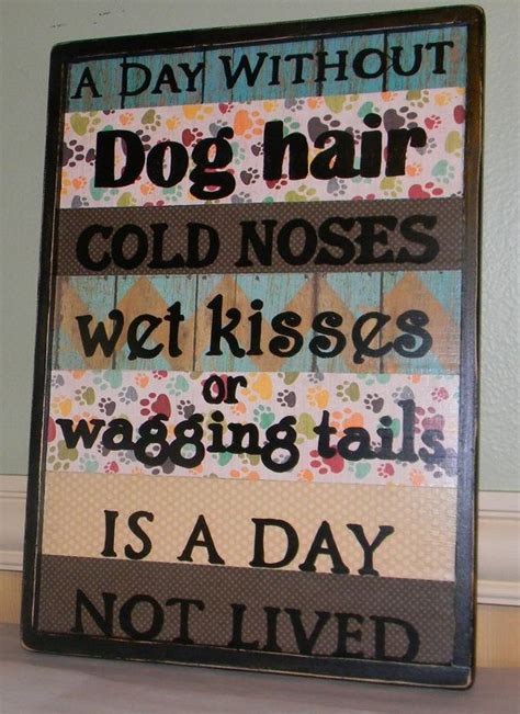 puppy decorations 25 best ideas about grooming salons on grooming pet grooming and