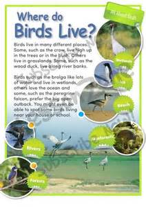 lesson zone au habitats