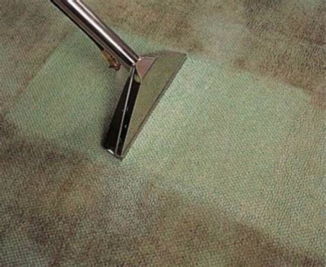 rug cleaning penrith best carpet cleaning penrith