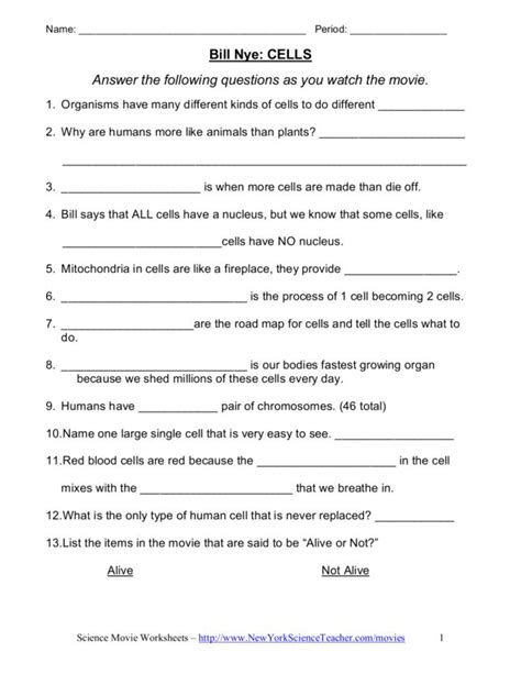 Bill Nye The Science Cells Worksheet by 7th Grade Science Worksheet Lesupercoin Printables Worksheets