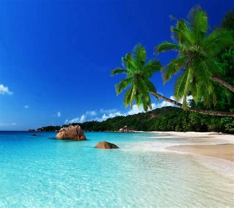 most beautiful beaches pictures to pin on pinterest pinsdaddy secluded