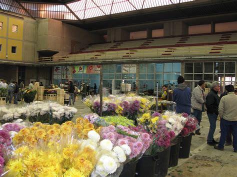 mercato dei fiori terlizzi photogallery mercato dei fiori terlizzi
