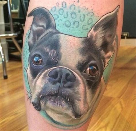 The 10 Coolest Boston Terrier Tattoo Designs In The World Boston Terrier Tattoos Designs