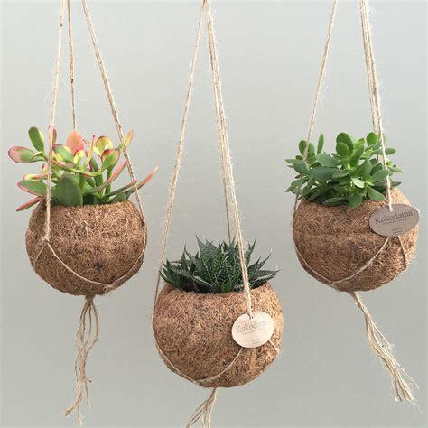 Hangende Planten Binnen by Hangplantjes Voor Binnen Diy Leuk Om Zelf Te Maken