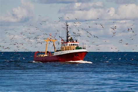 Pesca De Bajura Que Significa intec prevenci 211 n de riesgos laborales en el sector de pesca bajura pesca y marisqueo