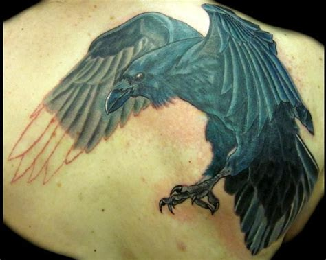 new school dove tattoo tattoo inspiration large raven covering up an old dove