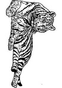 dessin 192 imprimer prefix mandala tigre imprimer
