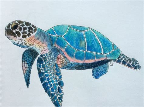 best 25 sea turtle ideas on turtle painting sea turtle painting and turtle tattoos