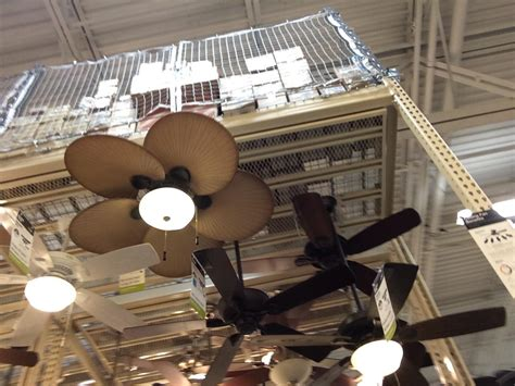 fans at home ceiling fan display images