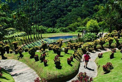Jardin Botanical Gardens Jardin De Balata Fort De Bay Martinique Afar