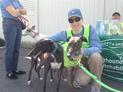 Pet Pantry Rye by News From Greyhound Rescue Rehabilitation