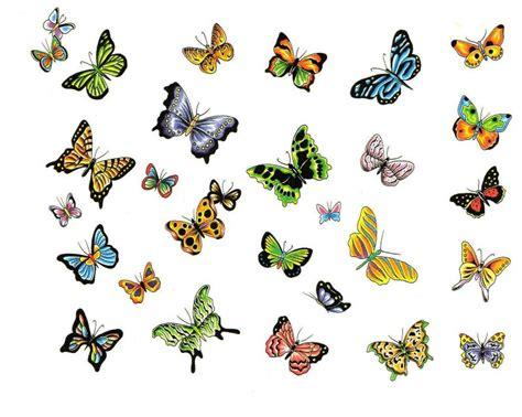 tiny color tatuaggi farfalle colorate i disegni piu belli da
