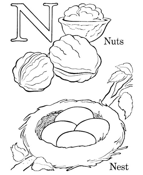 coloring page nest bird nest coloring page az coloring pages