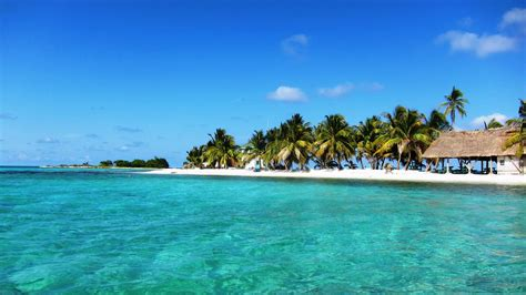 bird island placencia book your belize vacation packages tours with roam