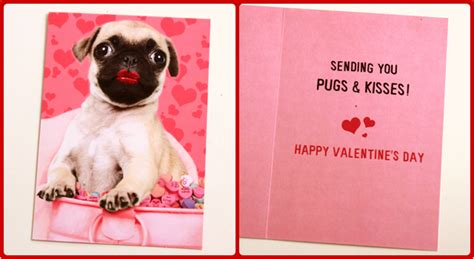 pugs and kisses valentines card s day cards toughpug net