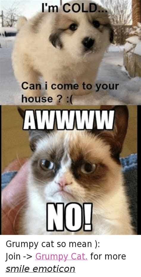 Mean Kitty Meme - mean kitty meme 100 images cat meme savannah s paw