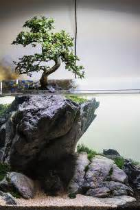 how to water a real tree quot use your imagination quot by filipe oliveira a tree