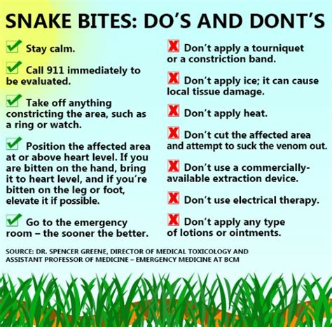 snake bite symptoms snake bite treatment what to do and not do in the event of a snake bite