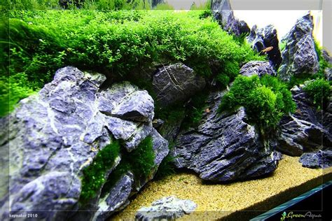 Aquascaping Rocks aquascape rock www imgkid the image kid has it