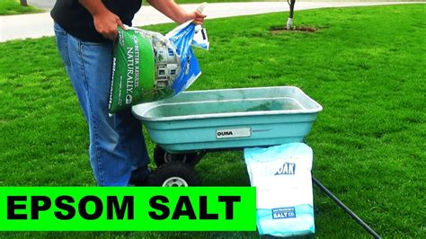 using epsom salt in the garden