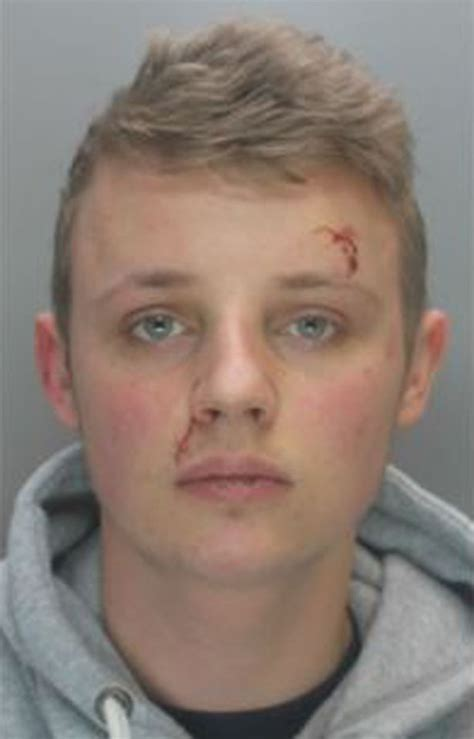 bailey gwynne boy jailed for boy stabbed in heart and left for dead after facebook row