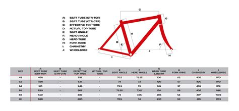 fit focused in 52 the riderã s weekly mind and companion books bike sizing 52 vs 49 tarmac