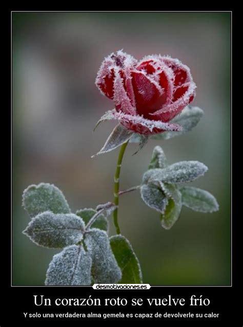 imagenes de corazones frios un coraz 243 n roto se vuelve fr 237 o desmotivaciones
