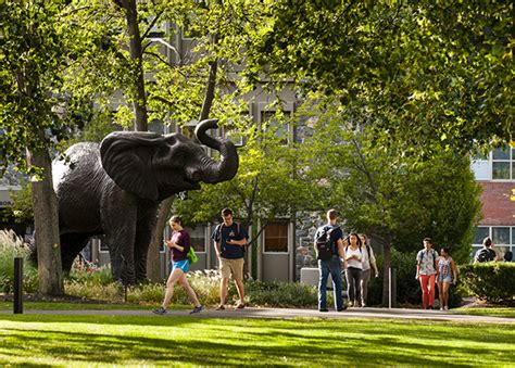Tufts Search Jumbo The Mascot Tufts