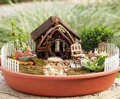 how to catch a toad in your backyard how to make a diy mini fairy garden gift in a vintage
