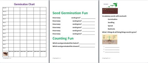 herb care chart diy free seed starter kit family finds