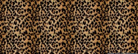 Animal Print Covers by Covers Ounce Covers Timeline Cover