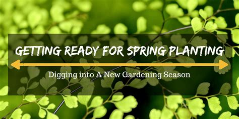 getting ready for spring getting ready for spring planting digging into a new