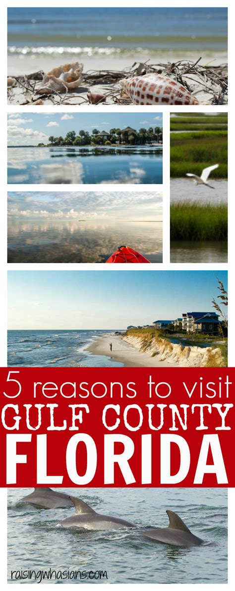 7 Reasons To Go On Vacation To Florida by 5 Reasons For Your Family To Visit Gulf County Florida