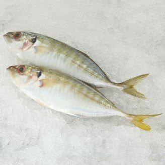 Ikan Selar panduan mengenali ikan yang selalu dijual di pasar