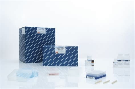 Qiagen Dna Stool Kit by Genomic Dna Sle Technologies Qiagen