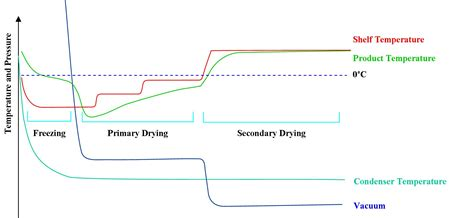 freeze drying phase diagram 동결 건조 freeze drying