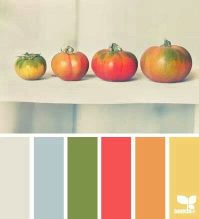 tomato color tomato tones color