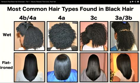 Hair Types Chart For Black by Hair Types Chart