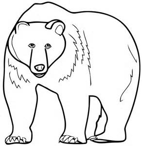 bear coloring pages preschool and kindergarten