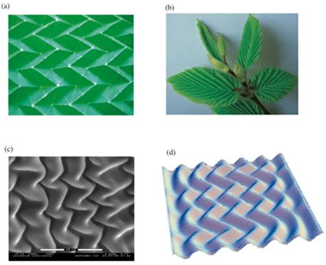 Origami Structures - self assembly of supported and unsupported thin