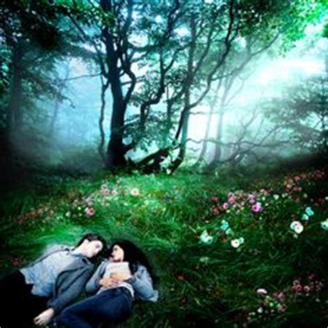 twilight fandom images   twilight