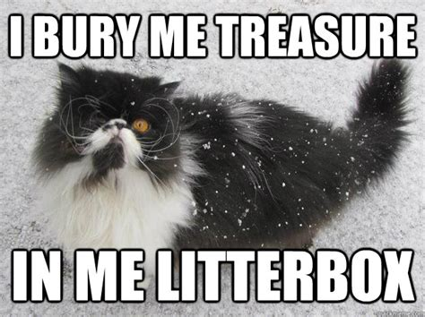 Pirate Booty Meme - i bury me treasure in me litterbox pirate cat quickmeme