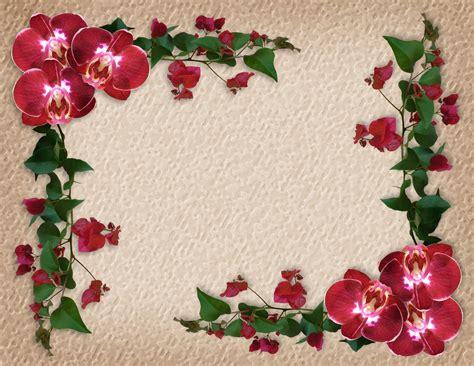 rosas para escribir marcos de flores para poemas marcos photoscape marcos