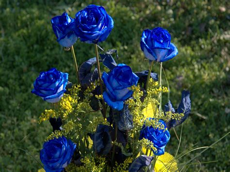 blue roses tattoo meaning tattoos blue meaning